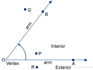 Interior And Exterior Of An Angle Special Angles Cbse Tuts