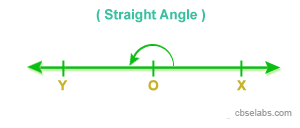 Interior and Exterior of an angle, Special Angles - CBSE Tuts